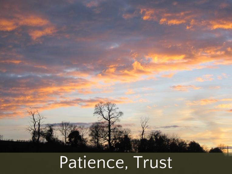 patiencetrust