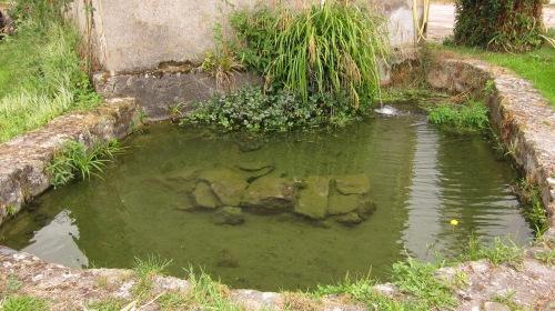 pond, elemental